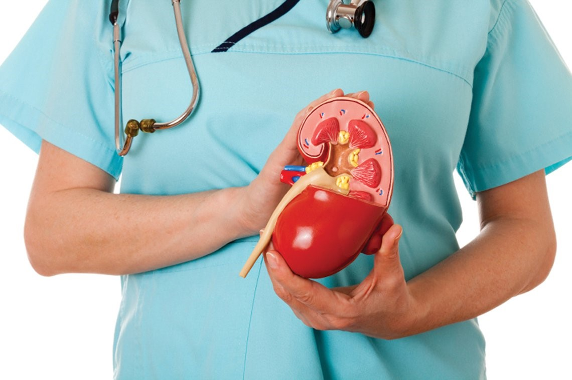Kidneys-Failure-Ayurvedic-Treatment
